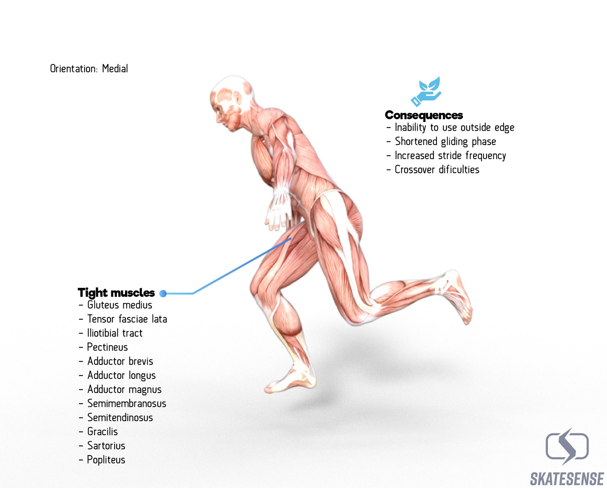 Skrátené svaly dolnej končatiny u hokejistov